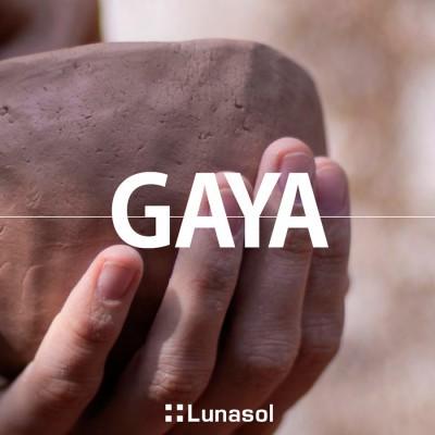 Lunasol Gaya
