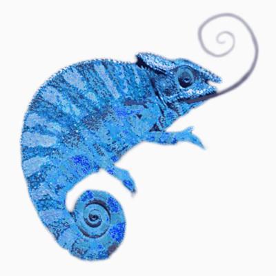 Chameleon sk